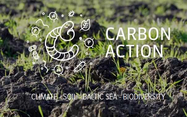 Carbon action