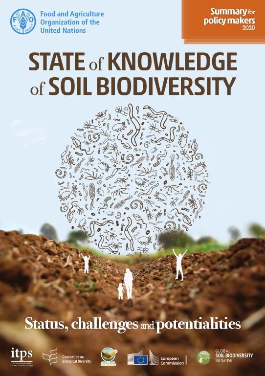 FAO Soil biodiversity